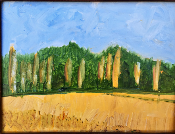 Poplars above river $50